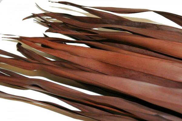 Palm Blätter 400g, braun