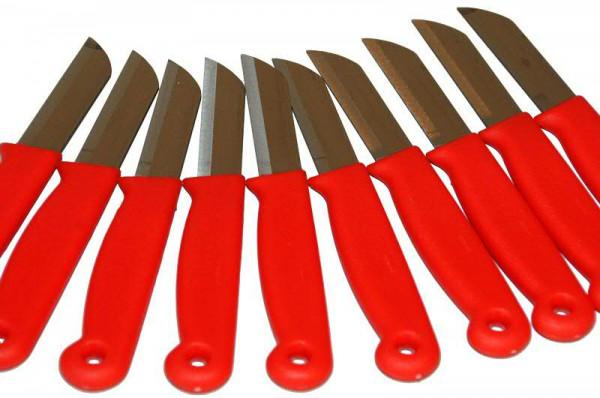 Messer 15,6cm rostfrei, rot