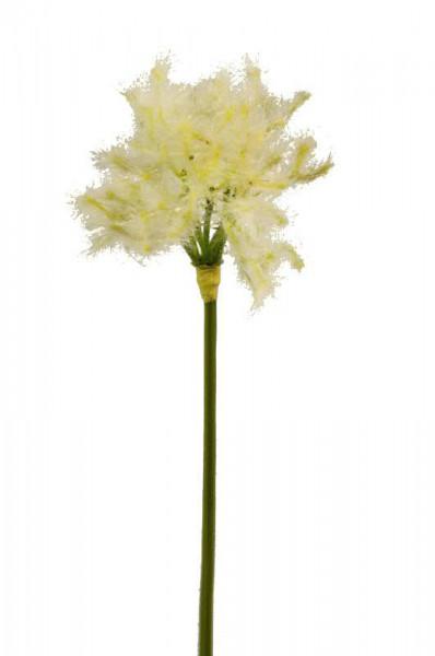 Dandelion 52cm, weiß