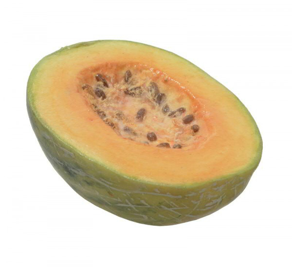 Honigmelone 15cm halb, hellorange