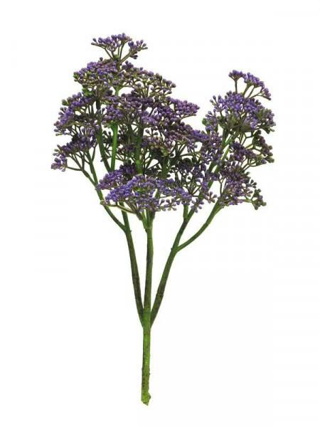 Sedum Zweig 36cm, purple