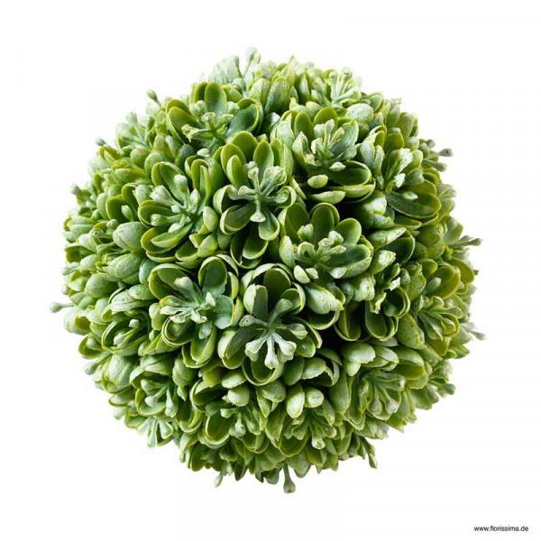Sukkulenten Kugel D12cm, grün