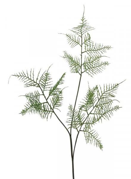 Farn Zweig 84cm, grün