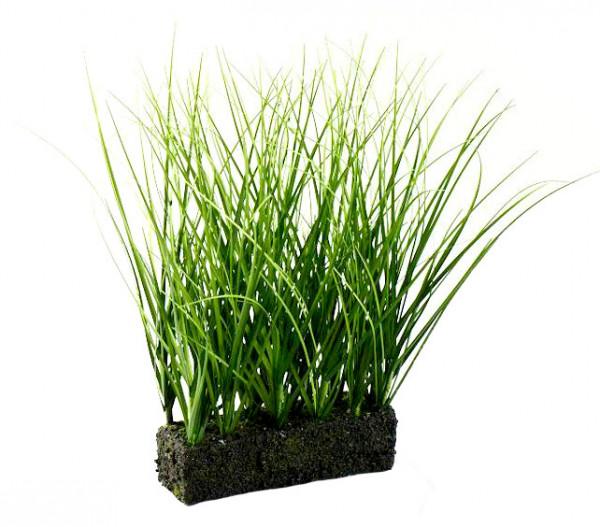 Gras m.Erde 28x5x15cm, grün