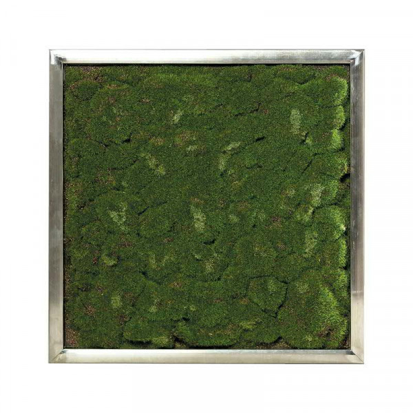 Dekoplatte 60x60cm Moos mit Alu Rahmen, grün
