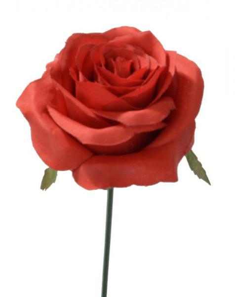 Rose D8H19cm, rot