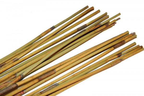 Reed Stem 90cm lang, natur