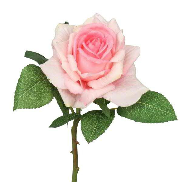 Rose 26,5cm real touch, hellrosa