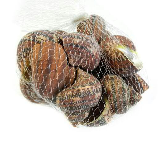 Muscheln 6,5cm 500g, rotbraun