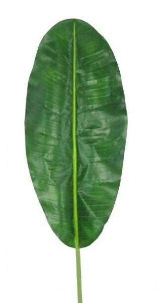 Blatt Banane SP 56/130cm, grün