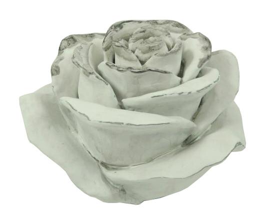 Rose Poly D15H11cm, weiß wash