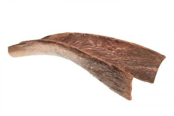 Palmsing SP 60-65cm, kupfer