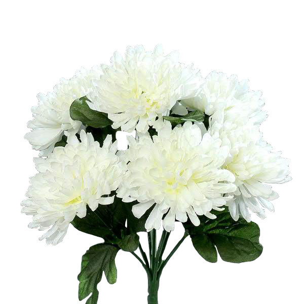 Chrysanthemen Strauß x7 25cm, creme