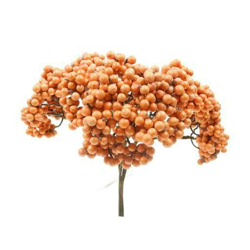Beeren Bündel 25cm x4, orange