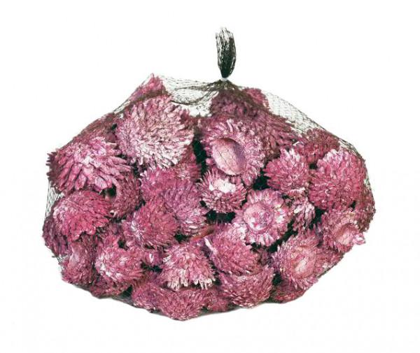 Acorn Cones 1kg, brombeer