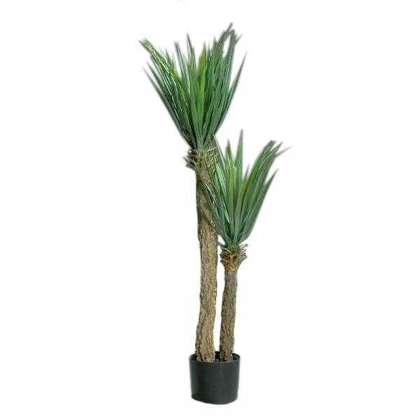 Palme Yucca im Topf SP 110cm