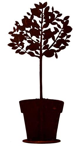 Rost Zitronenbaum 80cm