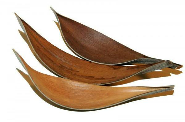 Cocosblatt mittel 100St. FPK, natur