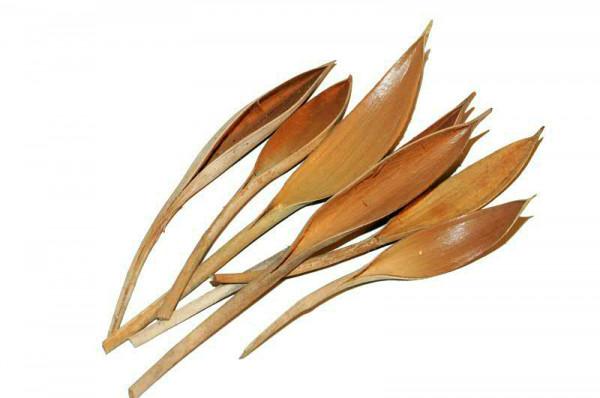 Cocosblatt mini 1kg FPK, natur