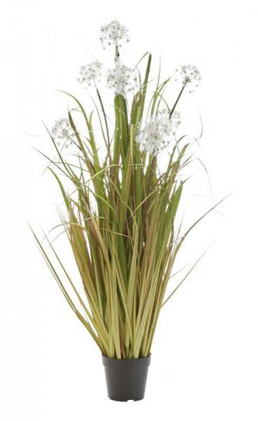 Gras im Topf 110cm mit Pusteblume, grün/braun