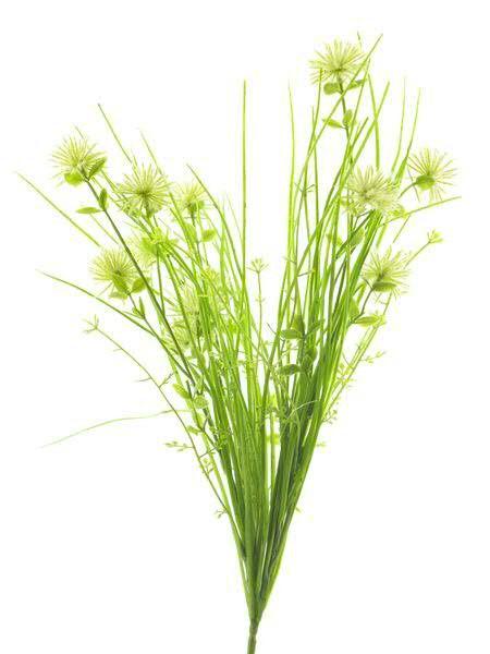 Distel 43cm mit Gras, creme/grün