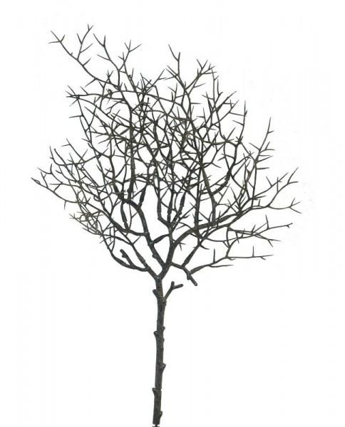 Zweig 44cm, natur