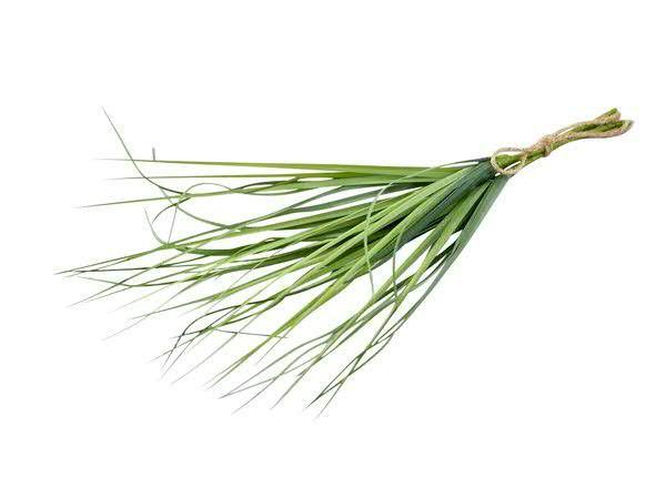 Gras Bündel 47cm x3, grün