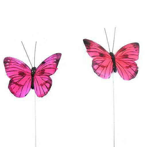 Schmetterling Feder 9,5cm 12St. sort. Stecker, pink/rot