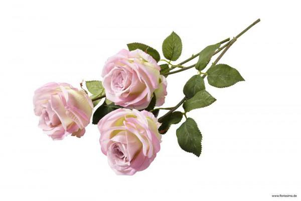Rose 39cm, lila