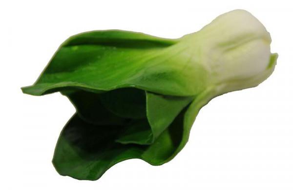 Salat 17cm, grün