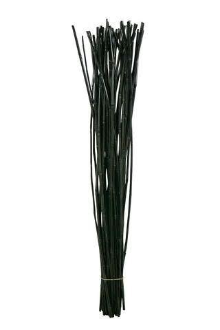Wild Canna 1kg 1m, schwarz