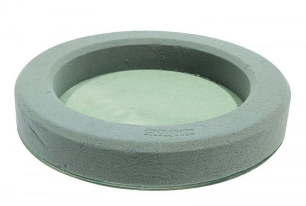 Oasis Bioline Deco Ring 32x4,5cm Bestpreis