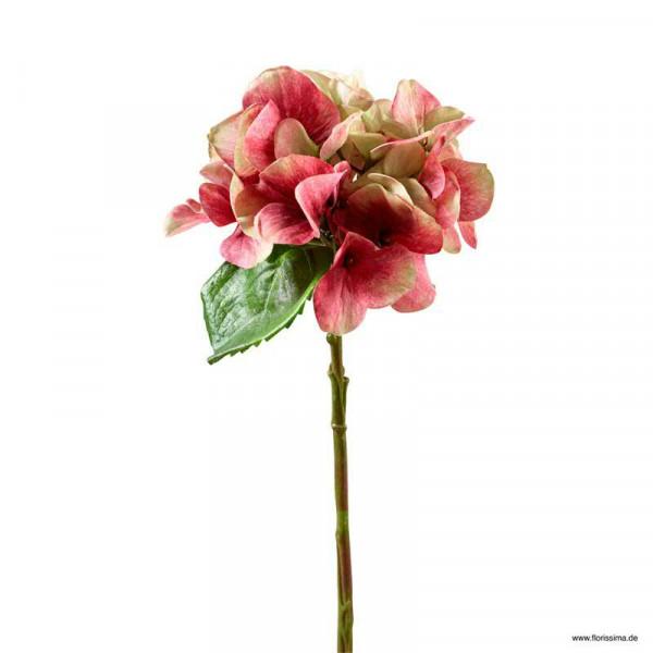 Hortensie 33cm, rot/grün