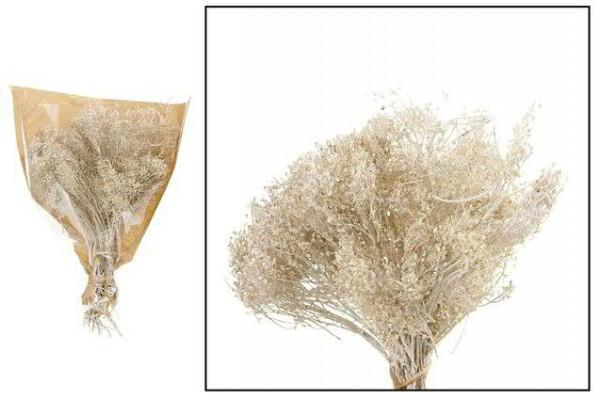 Lepidium 60gramm, white wash