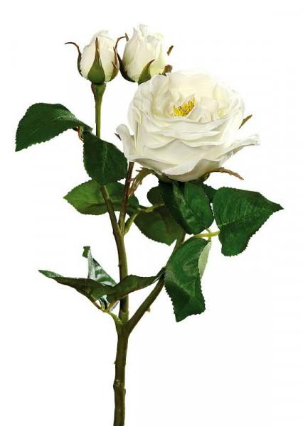 Rose verzweigt 46cm, creme