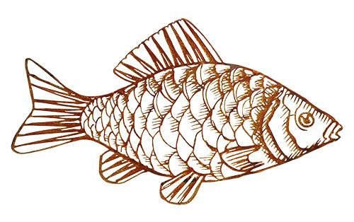 Rost Fisch 65cm