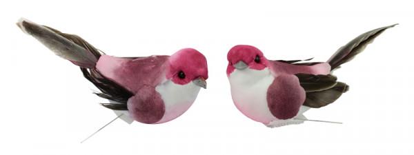 Vogel Federn 8x4x3,5cm 12St. Stecker,mit 20cm Draht, pink