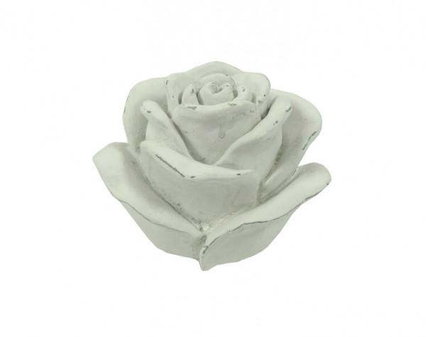 Rose Poly D10H8cm, weißwash