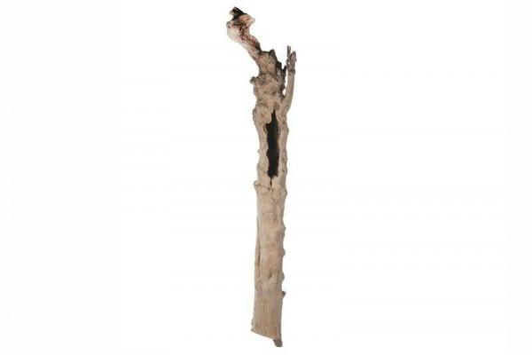 Baumstamm Holz D17-20H200cm Kaffeebaum, natur