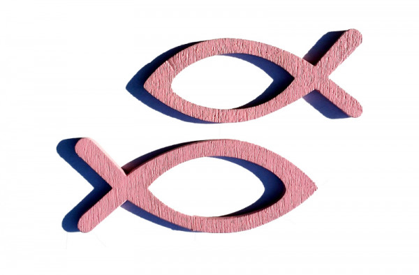 Fisch Holz 4+5cm 60St., rosa