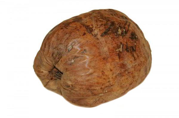 Cocos Nuss ganz SP, natur