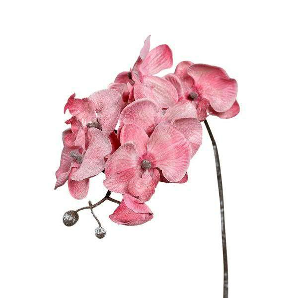 Phalaenopsis 60cm beglittert, rose