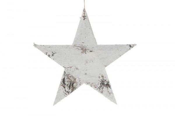 Birken Stern SP 20cm zum Hängen, hellgrau