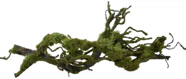Liane 69cm mit Moos, grün