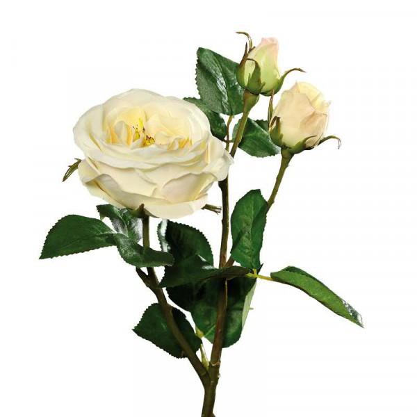 Rose verzweigt 46cm, lemon