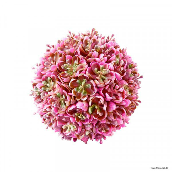 Sukkulenten Kugel D12cm, pink