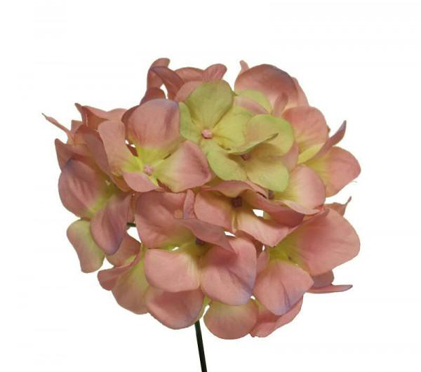 Hortensien Pick 27cm, pink