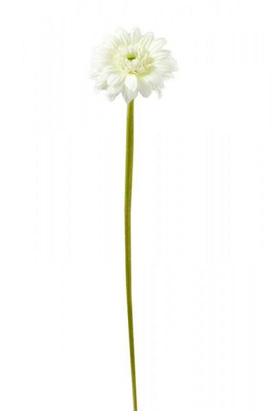 Gerbera 37cm, weiß