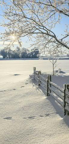 Banner 90x180cm Weite Schneelandschaft